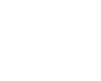 Expert WordPress Developers
